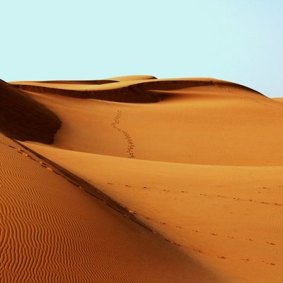 사막 모래 사막화 건조