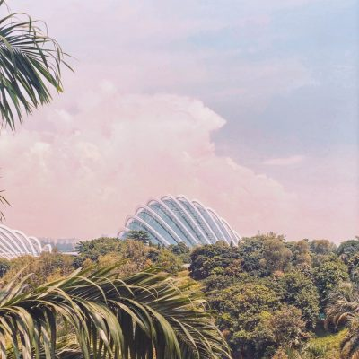 tropical 열대 자연 식물 공원 유메노시마