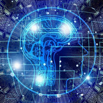 에듀테크, 랜선, 인터넷, 전파, 통신망, 네트워크