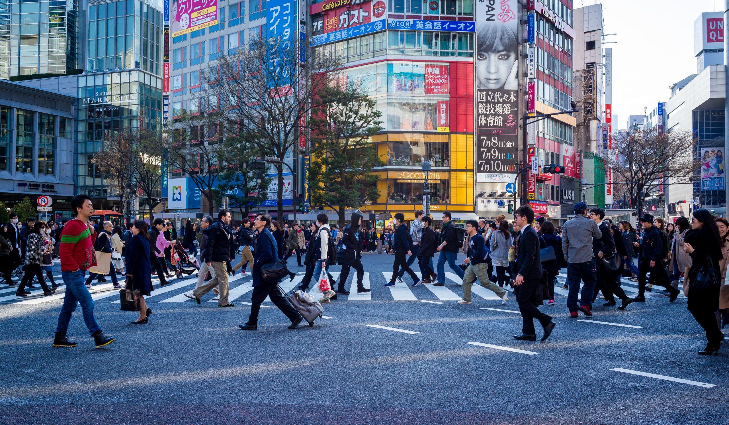 도로 횡단보도 길거리 도시 교통 사람 인구
