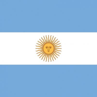 Argentina 아르헨티나 국기 해 태양