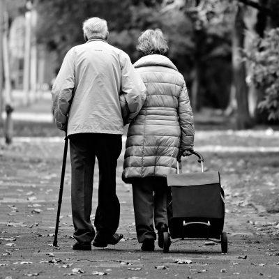 노년층, 고령화, 노인보호제도