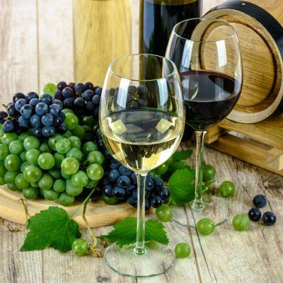 포도 포도주 와인