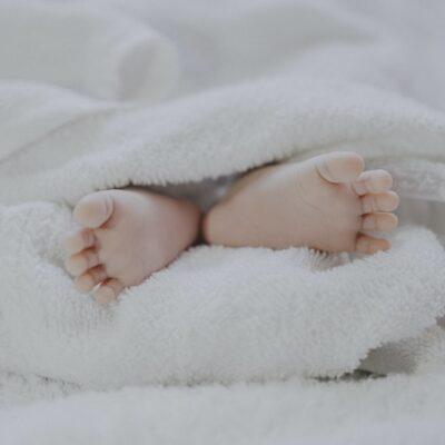 인구 아기 출산