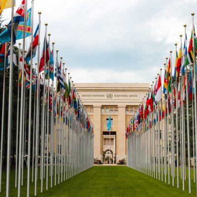 유엔 국기 UN