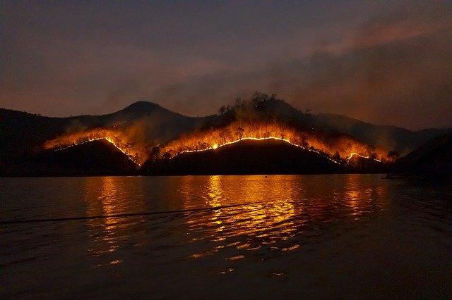 산불 화재 자연