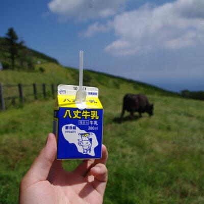 일본, 우유, 우유 팩, 빨대 우유