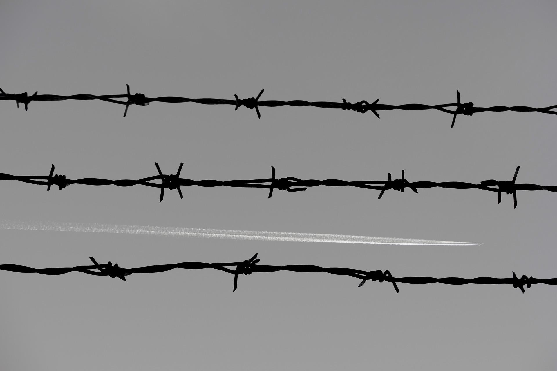 감옥 교도소 철조망